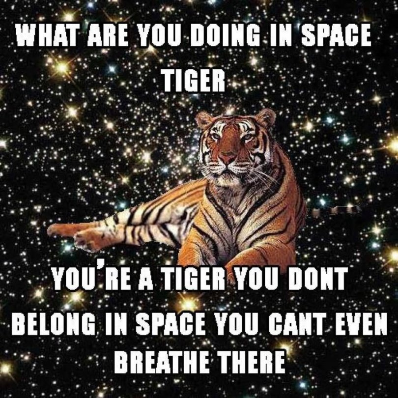 Space Meme What are you doing in space