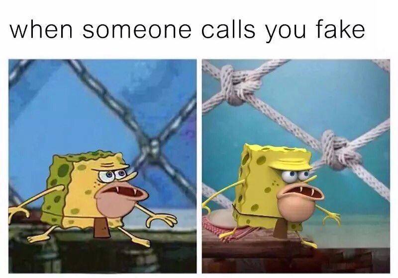 Spongegar Meme When someone calls you fake