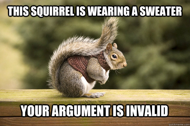 Squirrel Meme This Squirrel is wearing a sweater your argument is invalid