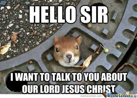 Squirrel Memes Hello sir i want to talk to you