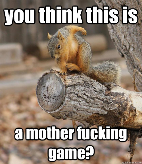 Squirrel Memes you think this is a mother fucking game
