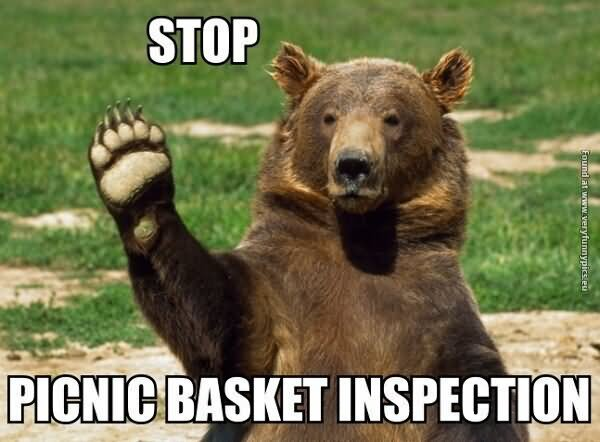Stop picnic basket inspection Stop Meme