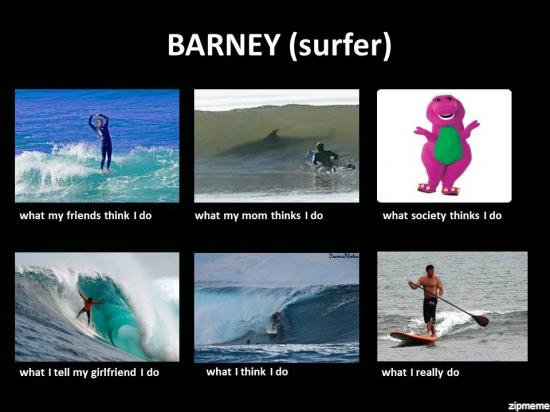 Surfing Meme Barney surfer what my friends think i do
