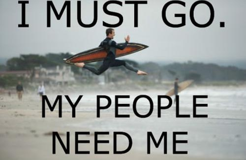 Surfing Meme I must go my people need me