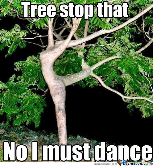 Tree Memes Tree stop that no i must dance
