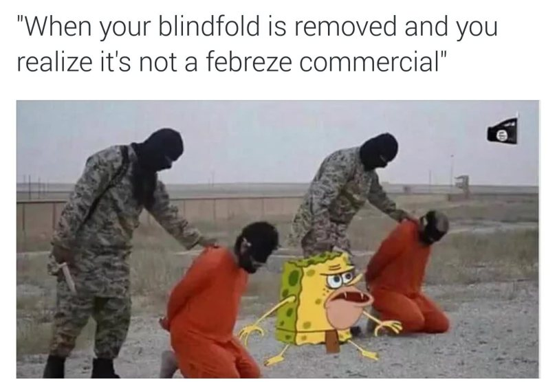 When your blindfold is removed and you realize it's not a Spongegar Meme