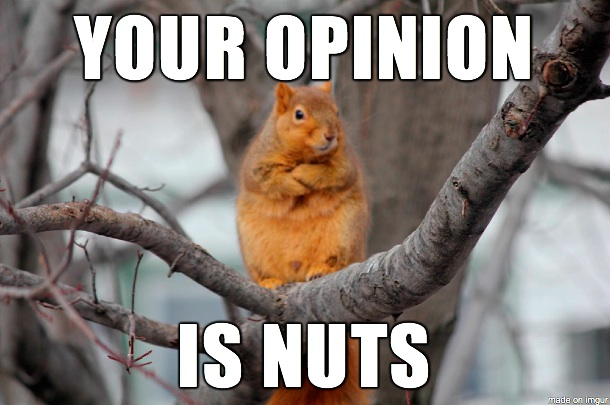 Your opinion is nuts Squirrel Meme