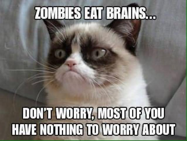 Zombie Meme Zombies eat brains don't worry most of you