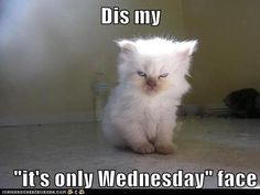 Dis my it's only Wednesday face Wednesday Memes