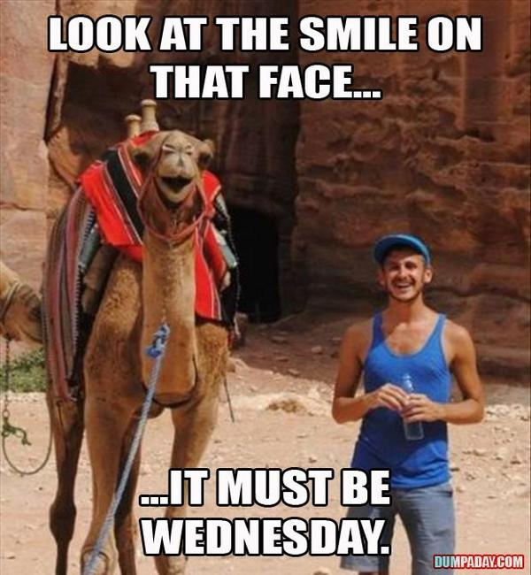 Look at the smile on that face Wednesday Work Meme