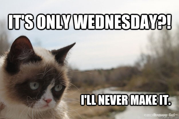 Wednesday Meme it's only Wednesday i'll never make it