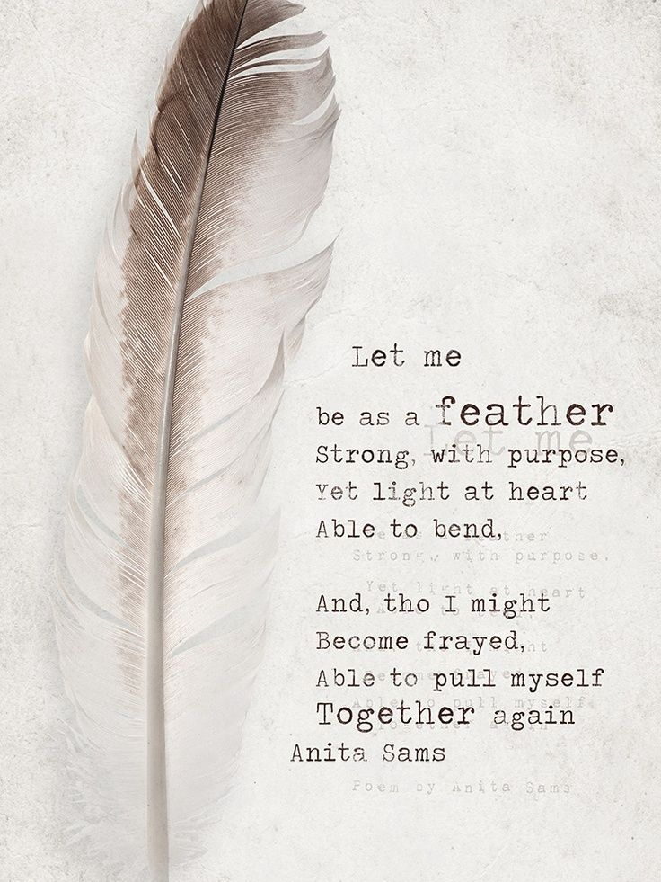 Feather Quotes And Sayings