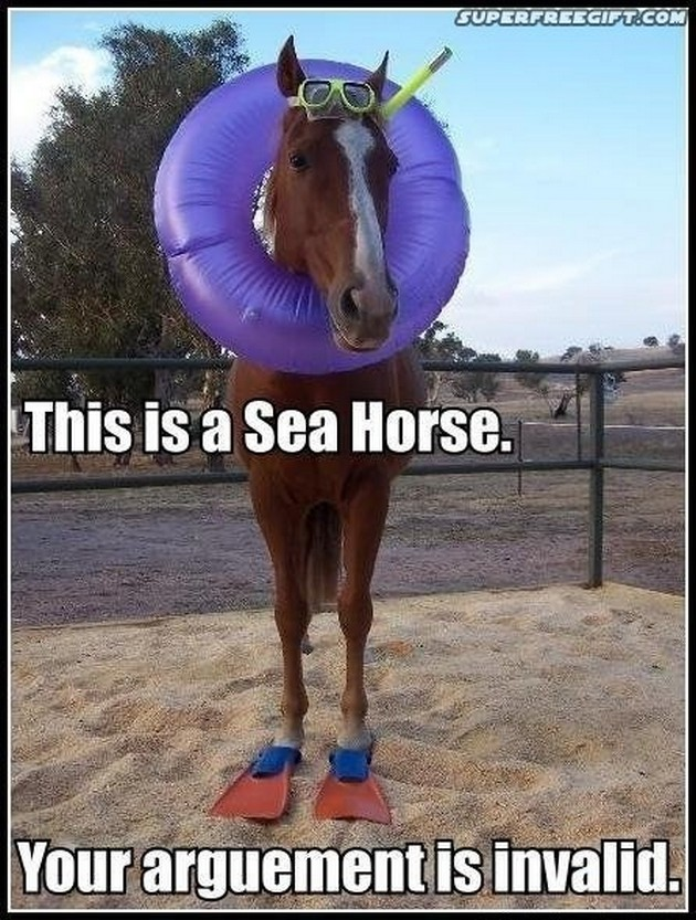 Funny Horse Memes