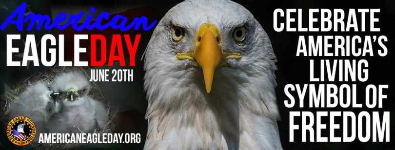 Have A Happy American Eagle Day Wishes Message