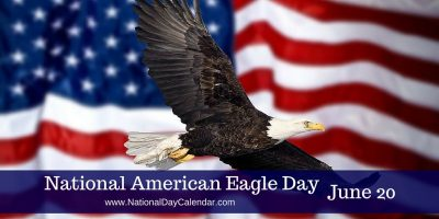 June 20 Happy National American Eagle Day Wishes Images