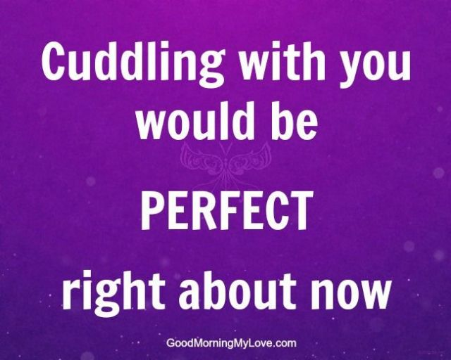Love Quotes Cuddling With You Would Be Perfect Right About Now