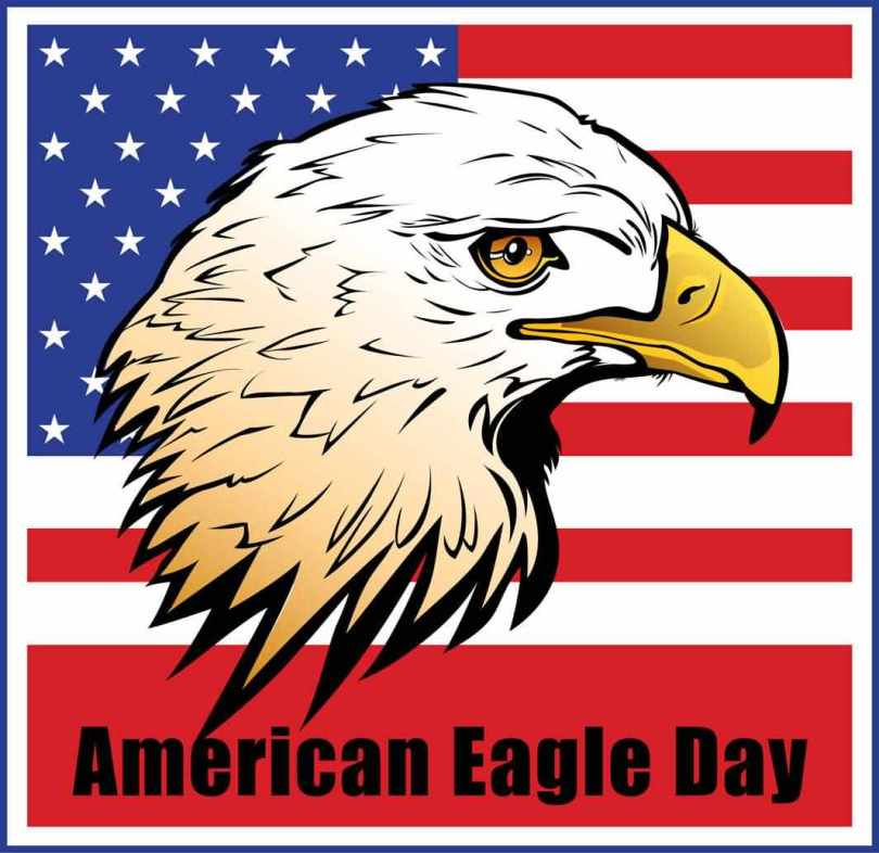 National American Eagle Day Wishes Images