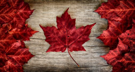 Wishing You A Very Happy Canada Day Wishes Picture
