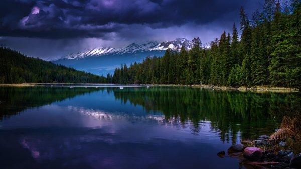 Природа фото высокого качества в 4к: фото, изображения и ...