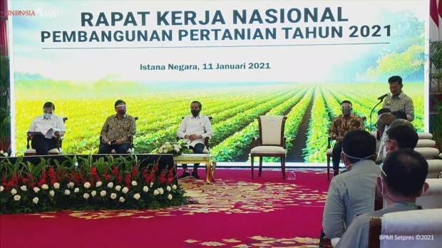 Penuhi Pangan Bagi 273 Juta Penduduk Indonesia Program Food Estate Dipercepat