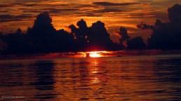 manado bay (5)