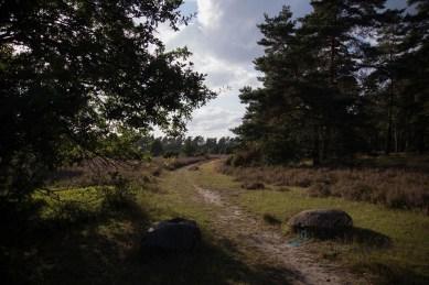 Tiefental - Heide - Hermannsburg