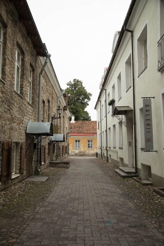 Altstadt Tallinn - Estonia
