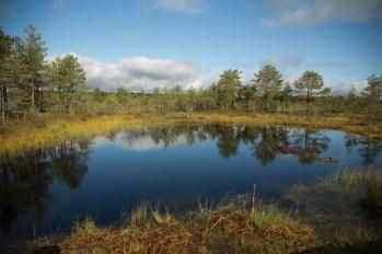 Lahemaa Rahvuspark - Estonia