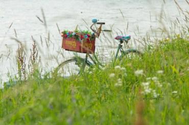 Rheinidylle - Summer feeling Poller Wiesen