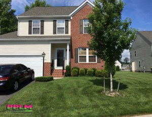 Fertilized By PPLM | (804)530-2540 | Green Lawns In VA