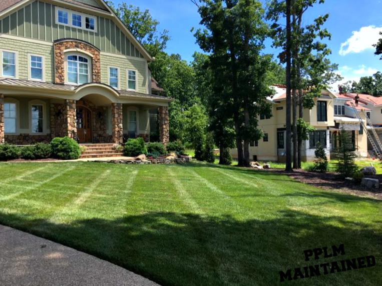 Reeds Landing Lawn Care