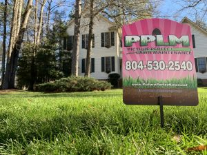 Spring Fertilizer   PPLM   (804)530-2540   Green Lawns In VA
