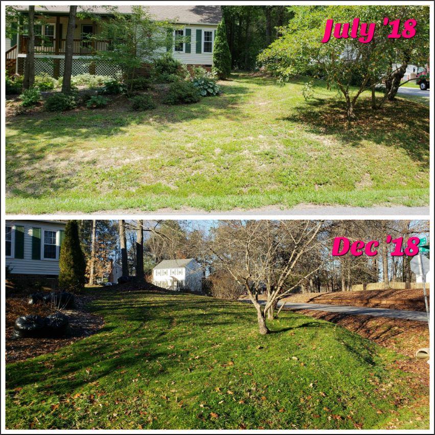 Brookcreek Estates Lawn Care
