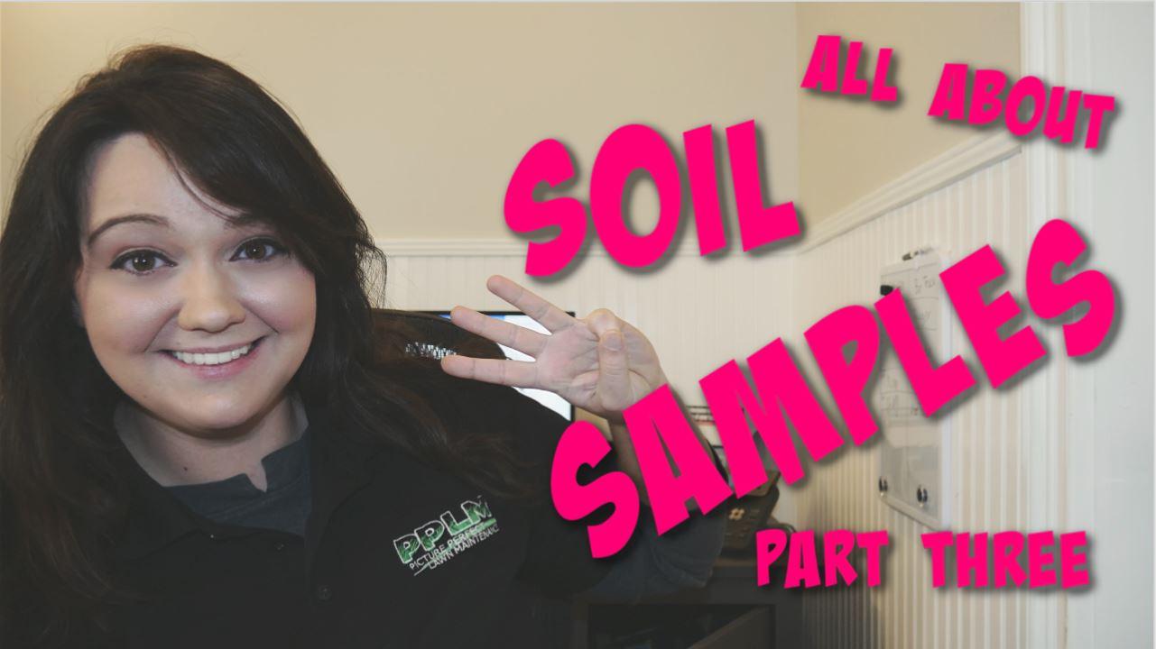 Lawn Soil Analysis & Corrective Treatments | PPLM | Soil Analysis Part 3