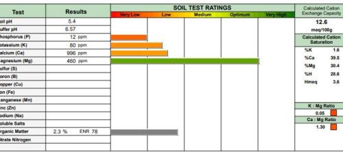 Lawn Soil Analysis & Corrective Treatments | PPLM | (804)530-2540 | Green Lawns In VA