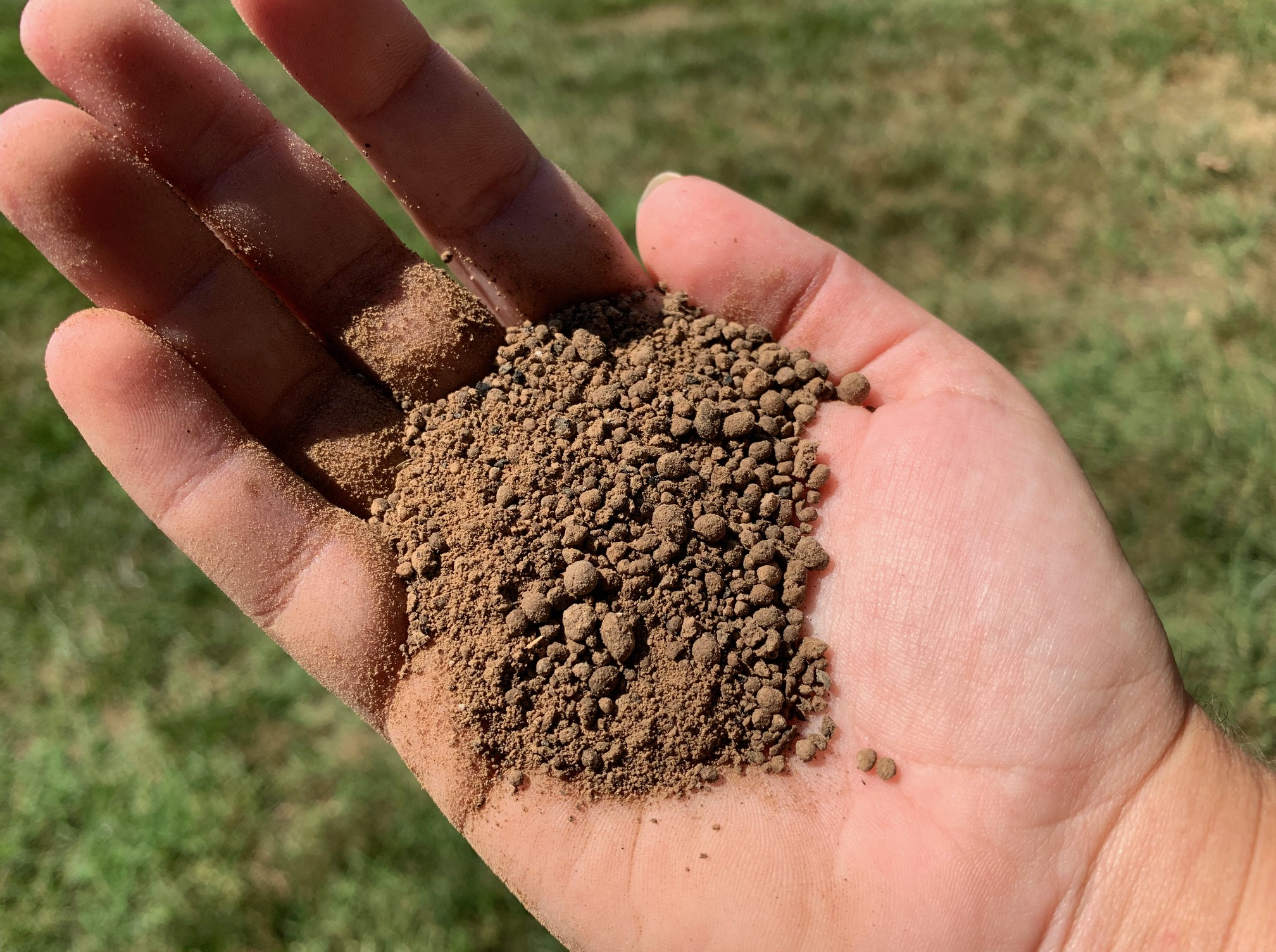 What Does Fertilizer Look Like?