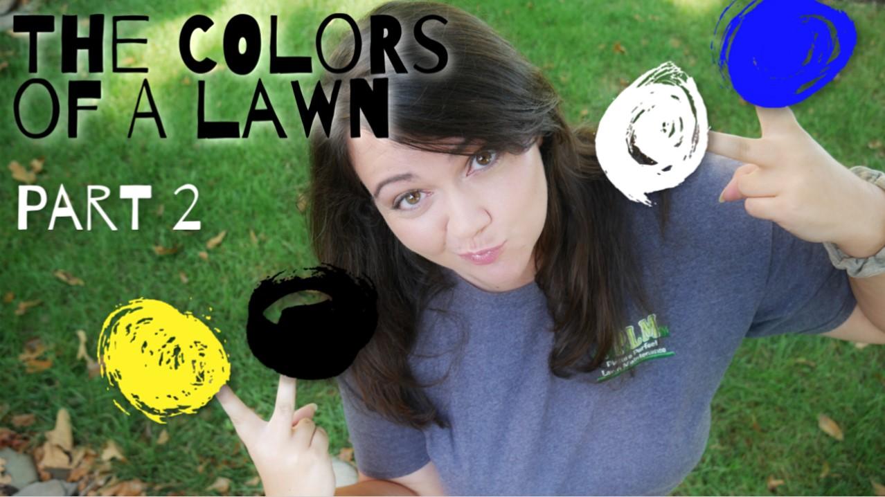 Lawn Color Changes