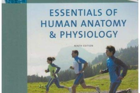 interior human anatomy and physiology marieb » 4K Pictures   4K ...