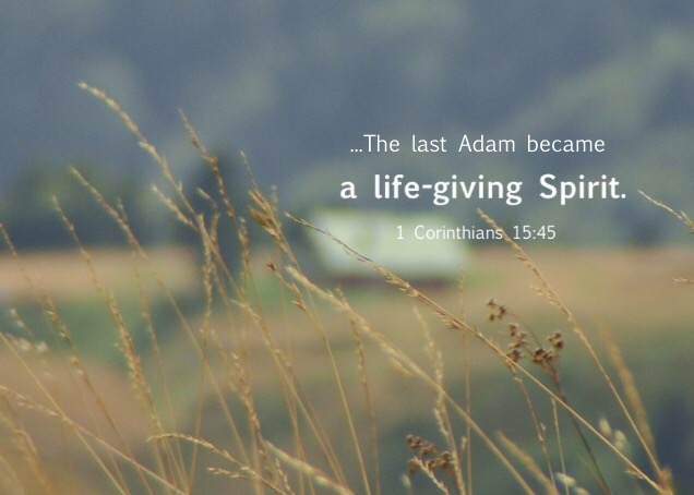 """1 Cor. 15:45 So also it is written, """"The first man, Adam, became a living soul""""; the last Adam became a life-giving Spirit."""