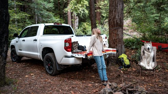 Here at dolan toyota near carson city, it is our mission to be the automotive home of drivers in the reno, nv area. New 2021 Toyota Tundra Near Me Dallas Tx South Toyota
