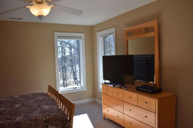 Forest bedroom with TV and dresser and closet
