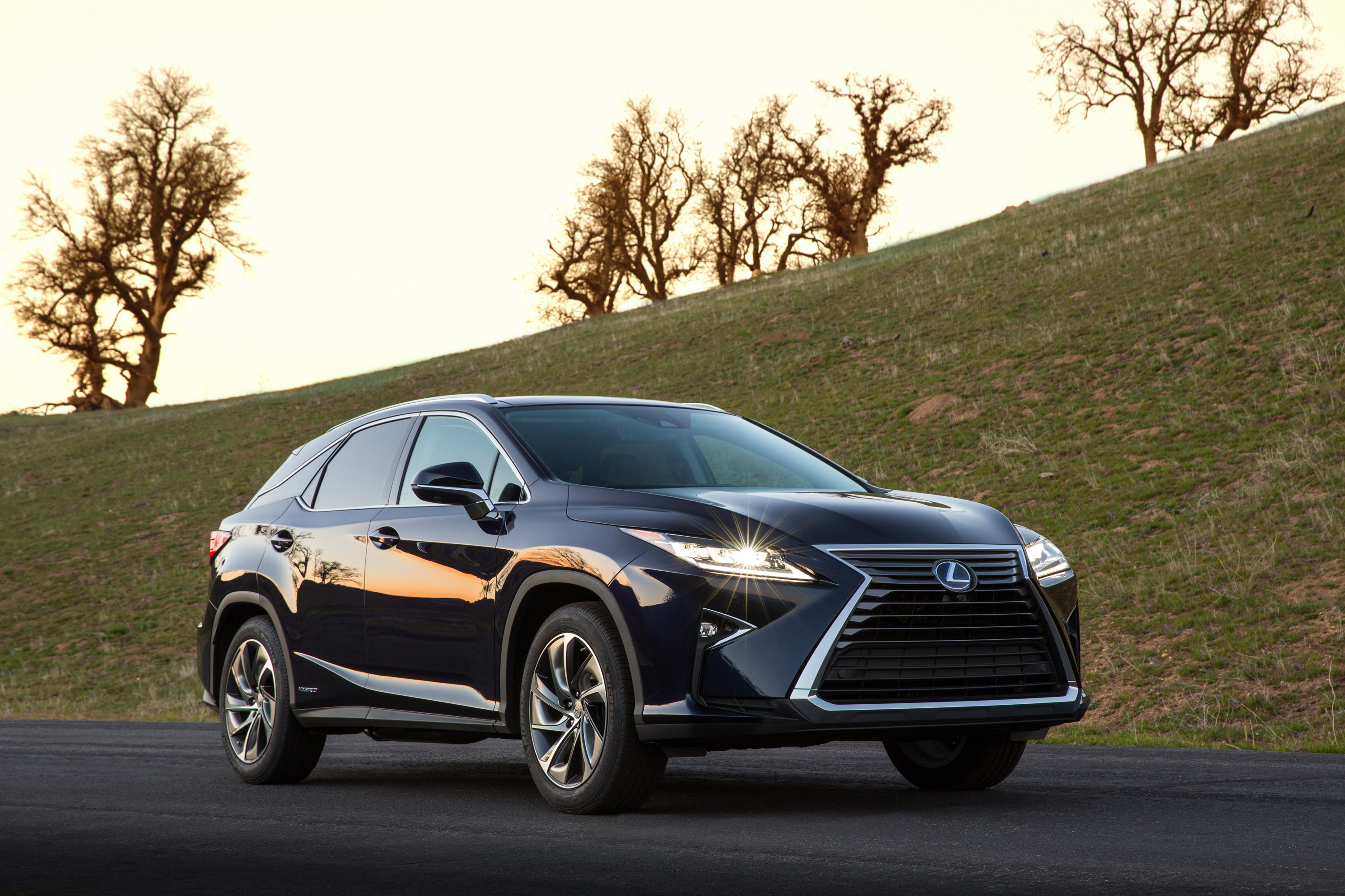 2018 Lexus RX L fers Three Rows Seating For 6 7 And Tri