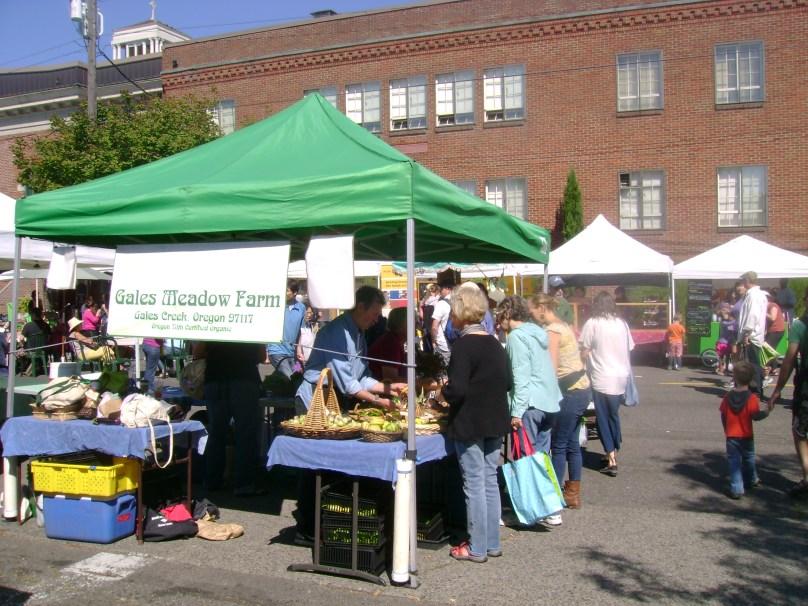 farmers market gales meadow farm