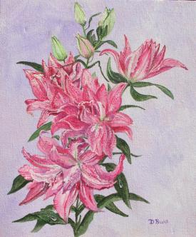 Double Oriental Lily Canvas