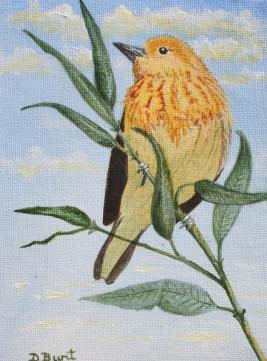 Yellow Warbler Canvas