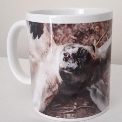 funny kangaroo coffe mug