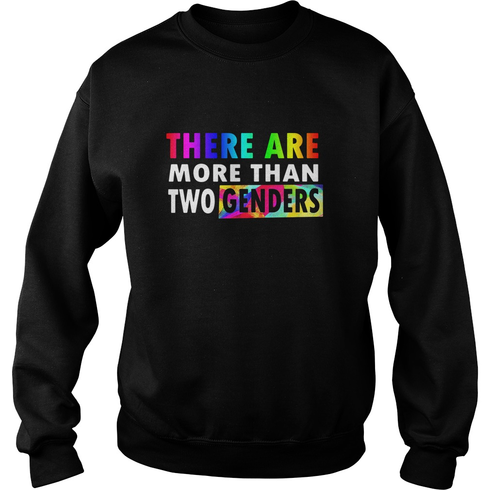 There are More Than Two Genders LGBT Sweater