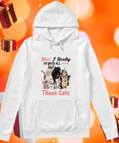 Yes! I really do need all these cats hoodie