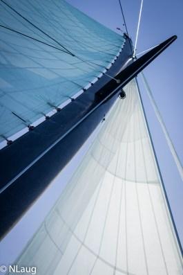 Sailing to the Whitsundays