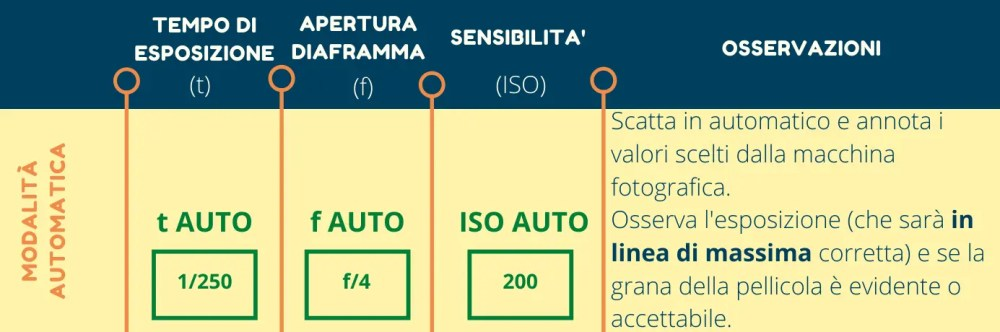 infografica automatico